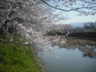 yamamotoyamamoto 040.jpg