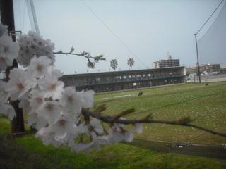 yamamotoyamamoto 046.jpg